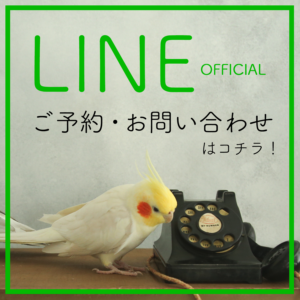 LINEofficialへのお問い合わせ